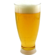 Pilsner Beer Glasses- Plastic Disposable - 14 oz