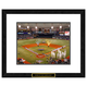 Tampa Bay Rays MLB Framed Double Matted Stadium Print