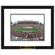 Tampa Bay Buccaneers NFL Framed Double Matted Stadium Print