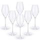 Urban Bar Bacci Crystal Champagne Glasses - 10.75 oz - Set of 6