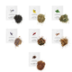 Teroforma 1pt Infusion Blend for Alcohol & Spirits - Variety Pack of 7 Assorted Flavors