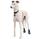 Thera-Paw Dog Boot Large TG