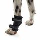 Kruuse Rehab Dog Carpal Joint Protection X-Large