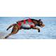 Helios Splash Dog Harness/LifeJacket Medium Yellow