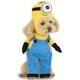 Despicable Me Minion Stuart Dog Costume XLarge