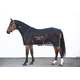 Rambo Sportz-Vibe ZX Horse Blanket Small