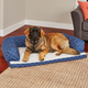 Quiet Time Hampton Blue Ortho Sofa Dog Bed 36x54