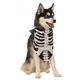Halloween Skeleton Dog Bandana