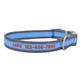 Personalized PetAttire Pro Dog Collar XS Purple/Ye