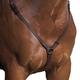 Wintec Breastplate Full Brown