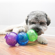 KONG Lock It Dog Toy 3 Pack Small