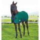 Weatherbeeta ComFiTec Dynamic Standard Foal Med 51