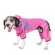 Pet Life Pawsterity Full Body Hoodie XSmall Pink