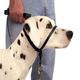 Gentle Leader Collar X LRG Red