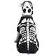 Casual Canine Glowing Skeleton Dog Costume XS