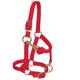 Weaver Mini Adj Nylon Halter Brass Lrg Mini Red