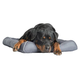 Pet Therapeutics TheraCool Gel Pet Bed X-Large