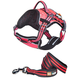 Helios Dog Pet Harness and Leash Combo SM Pink