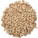 White Wheat 50 lb Sack