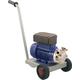 Flexible Impeller Pump with Trolley - Enoitalia Euro 20