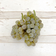 Chardonnay, Livermore Valley CA 2020 (Frozen Grapes, 6 Gallon Pail)