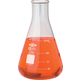 Erlenmeyer Flask - 125mL