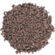 Briess Black (Patent) Malt