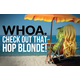 Hop Blonde - All Grain Beer Kit