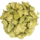 Amarillo Whole Hops