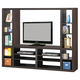 Coaster Entertainment Wall Unit in Cappuccino 700620