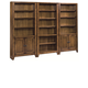 Aspenhome Cross Country Bookcase Wall in Saddle Brown IMR-BW