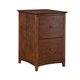 John Thomas Furniture Home Accents File Cabinet in Espresso OF581-52