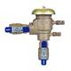 Febco 765 PVB Backflow Preventer 1