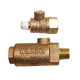Wilkins 14-ZWFR Freeze Prevention Valve with Test Cock 1/4