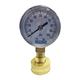 Aqualine 0 - 100 PSI Pressure Gauge 3/4