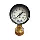 Aqualine 0 - 160 PSI Pressure Gauge 3/4