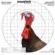Champion Turkey Sight-In Target (16