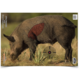 Birchwood Casey  Pregame Target 16.5x24 Boar 3EA - 35408