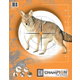 Champion Critter Series Targets (10 PK) 45781
