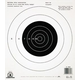 Champion B16 25 YD PISTOL SLOW FIRE  (100/PK) 40722