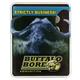Buffalo Bore Standard Pressure Heavy 45 LC 225 grain Barnes XPB Lead-Free Pistol and Handgun Ammo, 20/Box - 3H/20