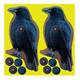 Birchwood Casey Shoot-N-C Crow 12 pc 8