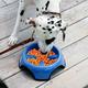 JW Pet Skidstop Slow Feed Pet Bowl
