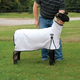 ProCool Mesh Sheep Blanket Large