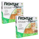 Frontline Plus 12 Month for Cats