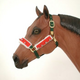 Holiday Horse Halter Bridle Set