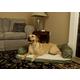 Quiet Time Bolster Orthopedic Pet Sofa 36x54 Tan