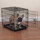 Crate Appeal Black Dog Crate ML
