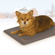 KH Mfg Deluxe Lectro-Kennel Heating Pet Mat