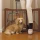 Richell Pet Sitter Gate